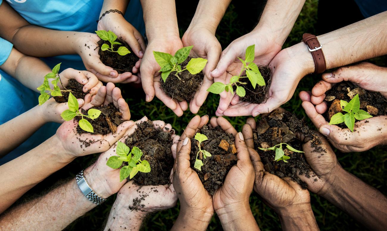 इस गुरुनानक जयंती, धरती को मिलेगा पौधों का तोहफा